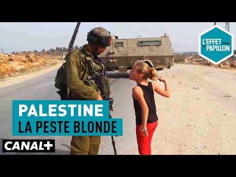 La palestine n,as pas de couleure
