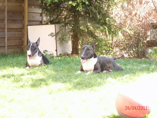 moi chez Blake le 26/04/2011