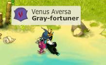 Voila je présente Gray-fortuner