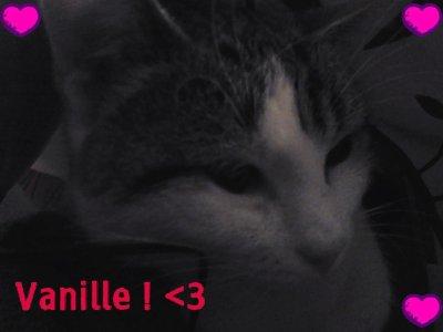 Vanille & Titus  ♥♥