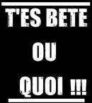 Photo de Bbey-Quefrette-225