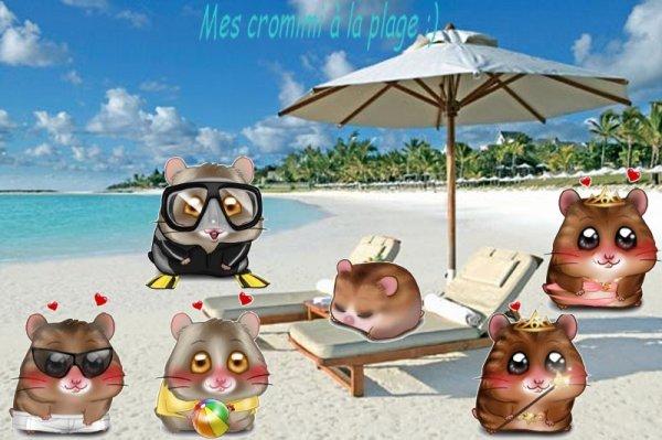 Mes cromimis à la plages!