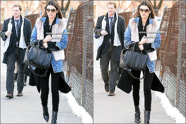 .                                                                                                                 28/01/2014 : Kendall et Liz on étaient vu alors qu'elles faisaient quelques courses et se promenaient à NY.                           .