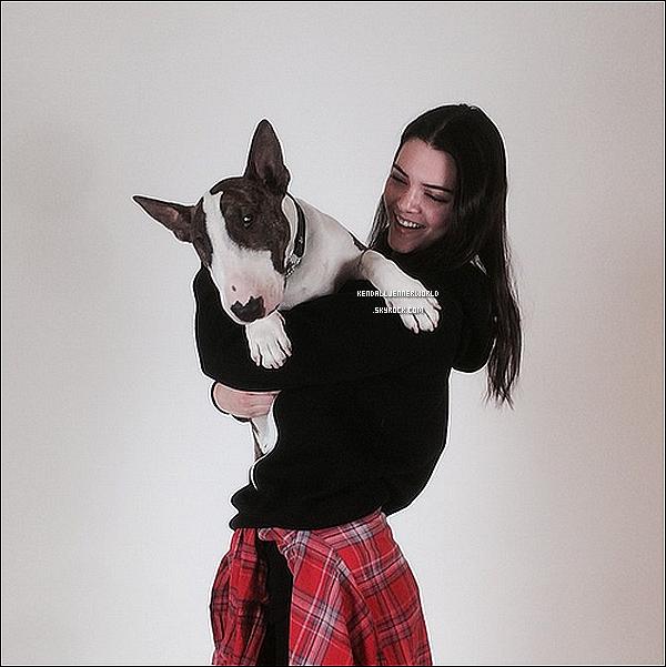 .                                                                                                                 Kendall en compagnie du chien de Marc Jacob lors d'un photoshoot.                             .