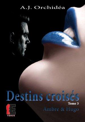 Destins Croisés - Tome 3 : Ambre & Hugo, A.J. Orchidéa