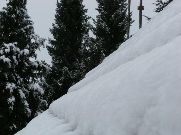 Première neige 2014.