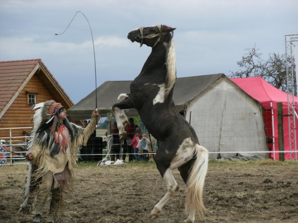 Festival Tatanka 2016.