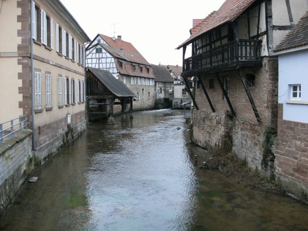 Randonnée à Woerth (Alsace) 2016.