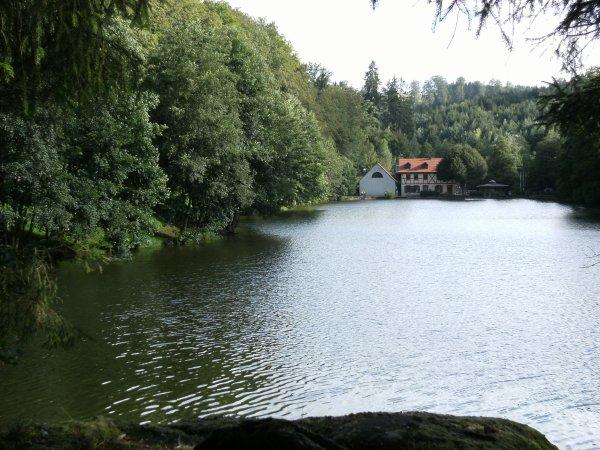 Randonnée à Petersbach - Alsace - 2016.