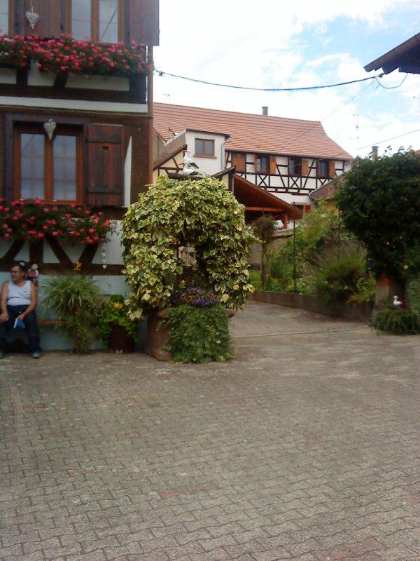 Visite de la cave vinicole Kirschner - Dambach-la-ville.