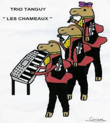 Trio Tanguy : les chameaux!!!