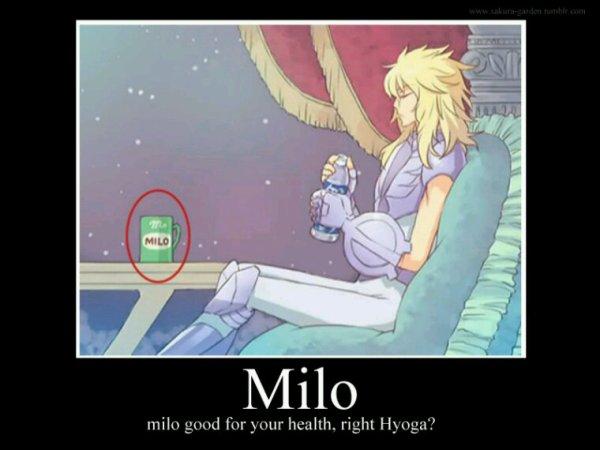 Hyoga et milo.... (camus aussi)