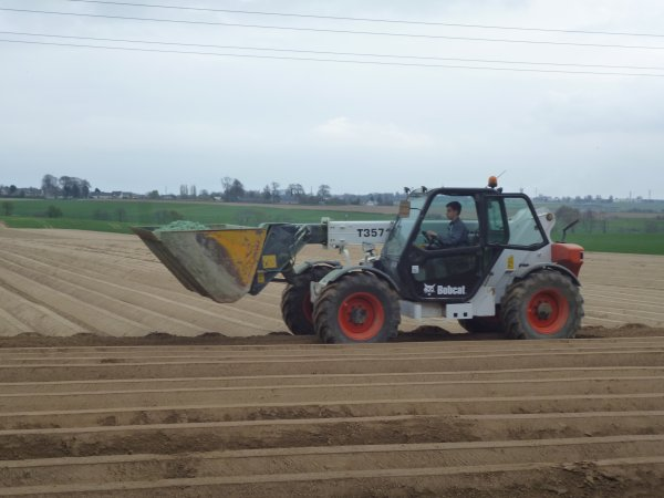 chantier de pomme de terre (SCEA de la chappelle blog de maxenceagri76)