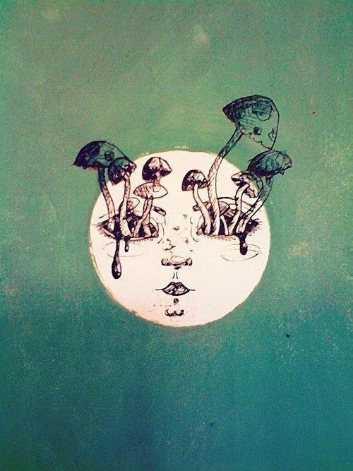 7 - Mushroom
