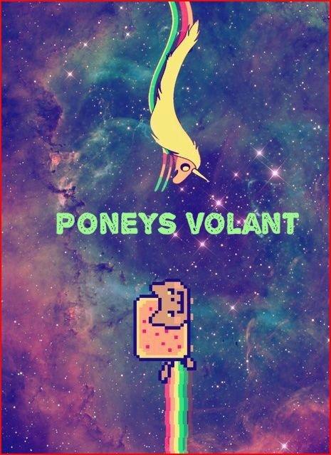 Poneys volant •~•