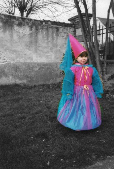 Aujourd'hui me voilà, je suis la même princesse au combat..