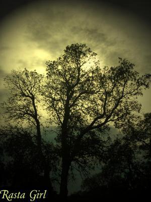 Mere nature <3