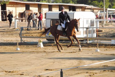 Dressage amateur 03/10/10
