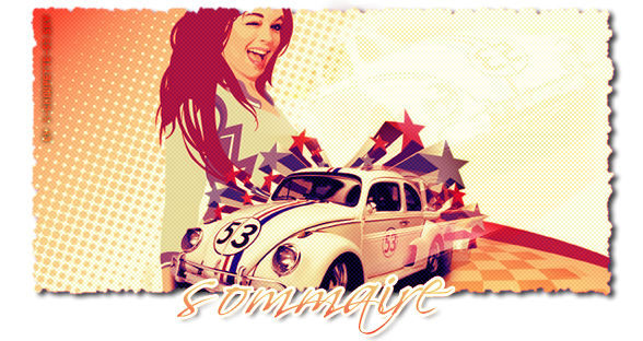 ✿ Sommaire ✿