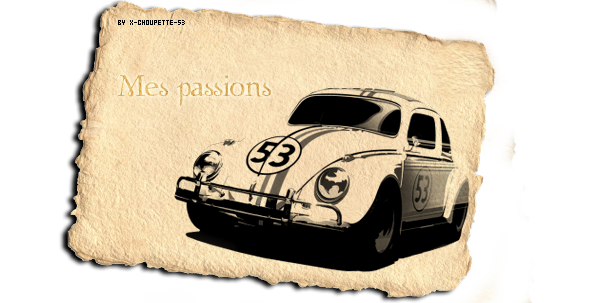 ✿ Passions ✿