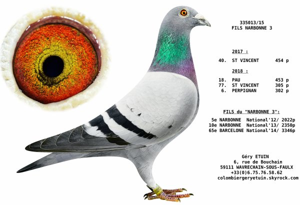 LE 335 013 de 2015