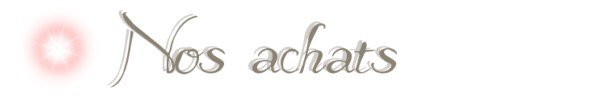 Objectifs / Achats