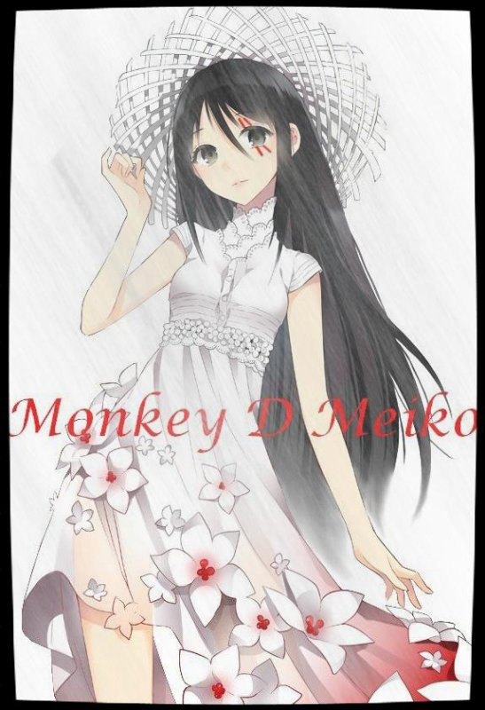 Présentation Meiko