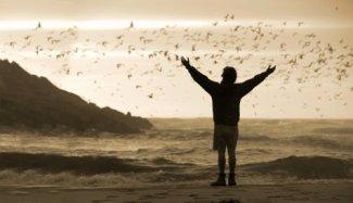 Qu'importe le temps. Qu'emporte le vent. Mieux vaut ton absence. Que ton indifférence.