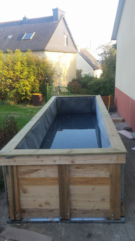 piscine pour carpe koi