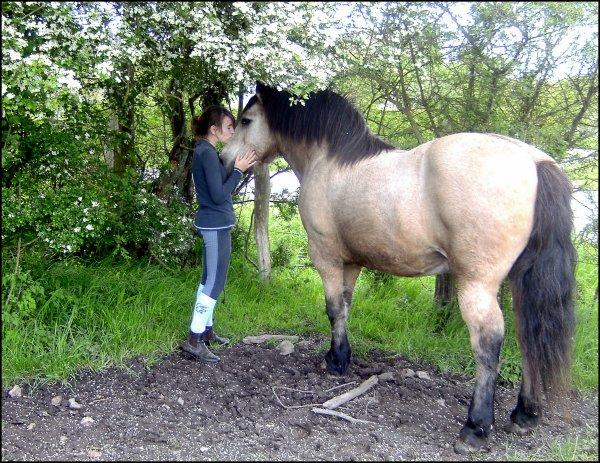 """""""Si quelqu'un te dit c'est juste un cheval, contente toi de lui sourire, il ne peux pas comprendre."""""""