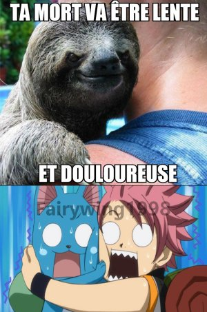 Fairy Tail - MDR