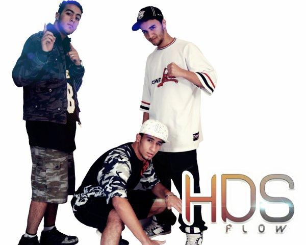 H.D.S.FLOW