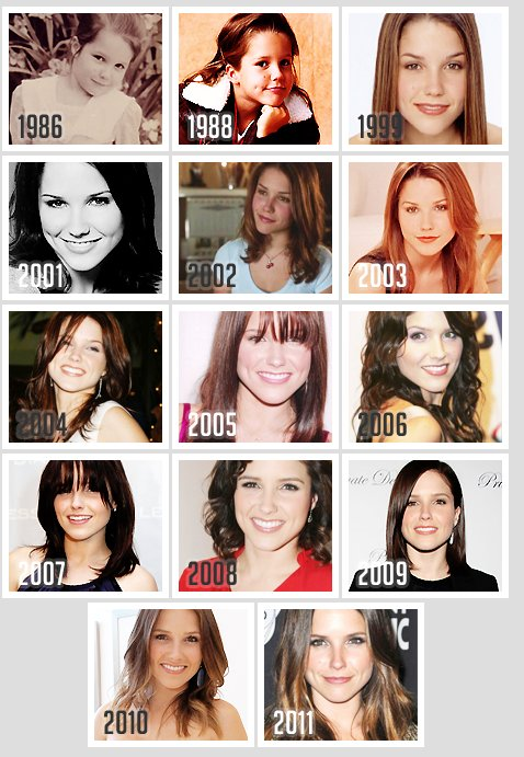 Evolution de Sophia