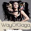 WayOfGaga