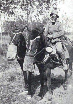 Le cheval auxiliaire de la victoire…