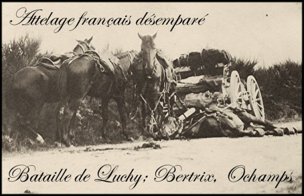 Bertrix 1914