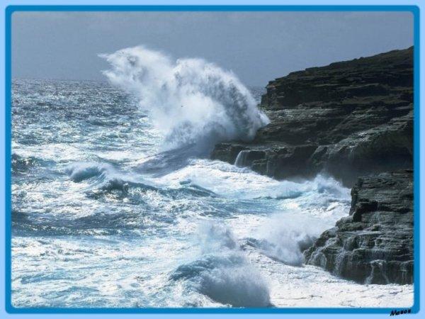 houps ! petit coup de vent sur le rivage !