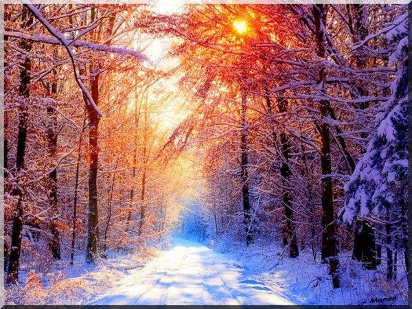 c est pour bientot et j espere de la neige cette année !