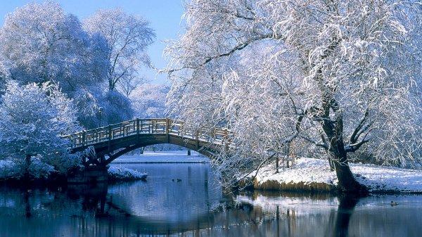 joli paysage hivernal !