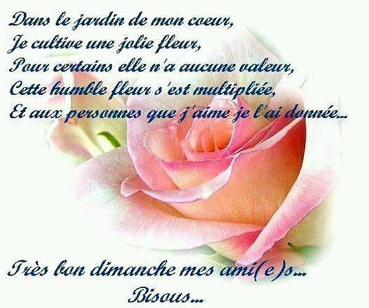 message du coeur !