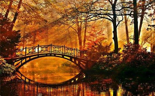 la fin de l automne !!!