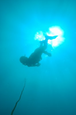 Hello !! Welcome to Gurp33's blog - 100% spearfishing