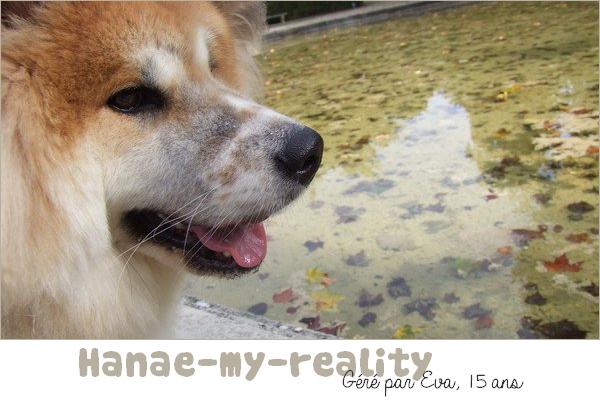Hanae-my-reality                                                                                                                                     #F