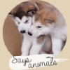 Says-animals