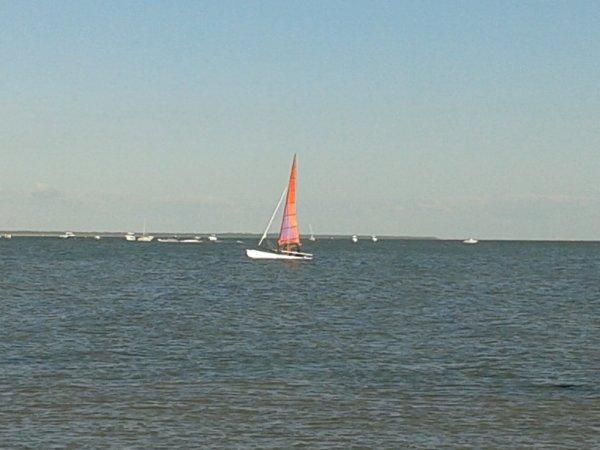 petit catamaran