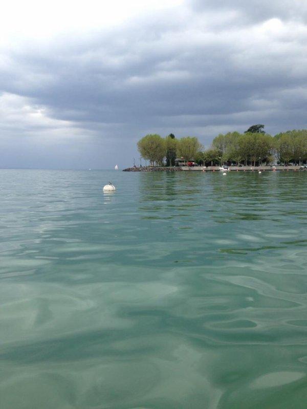 Bord du lac Léman