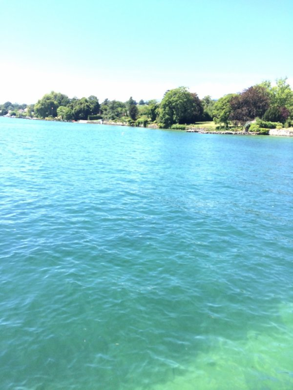 Prangins bord du lac (Léman)