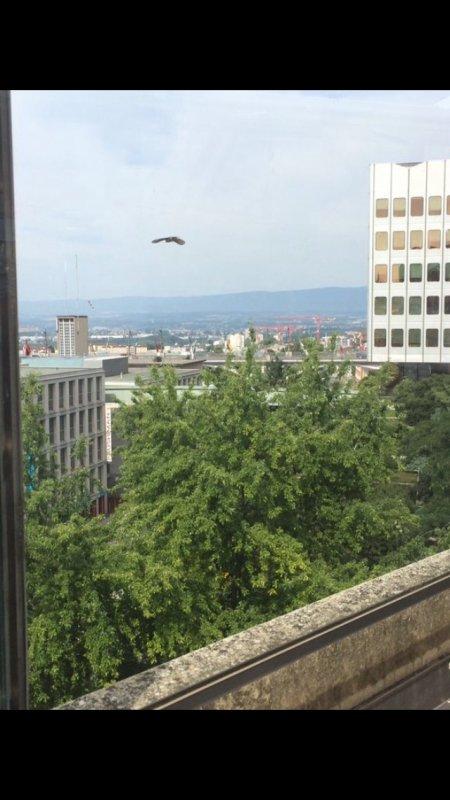 Vue sur Lausanne ;)