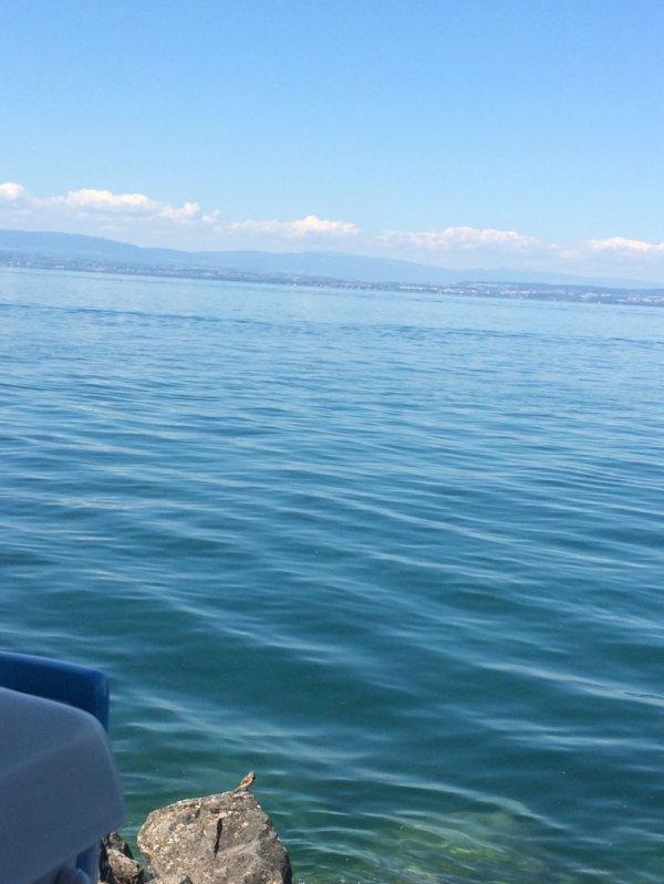 Lac Léman Evian