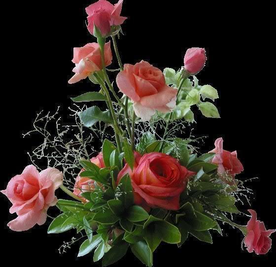 des fleurs des papilion des rose!!!!!!!!!!!!!pour vous souhaiter:::::::::::une bonne nuit!!!!!!